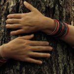 Treehug_cover